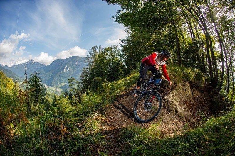 Best of Slovenia Single Trails bike park Trzic