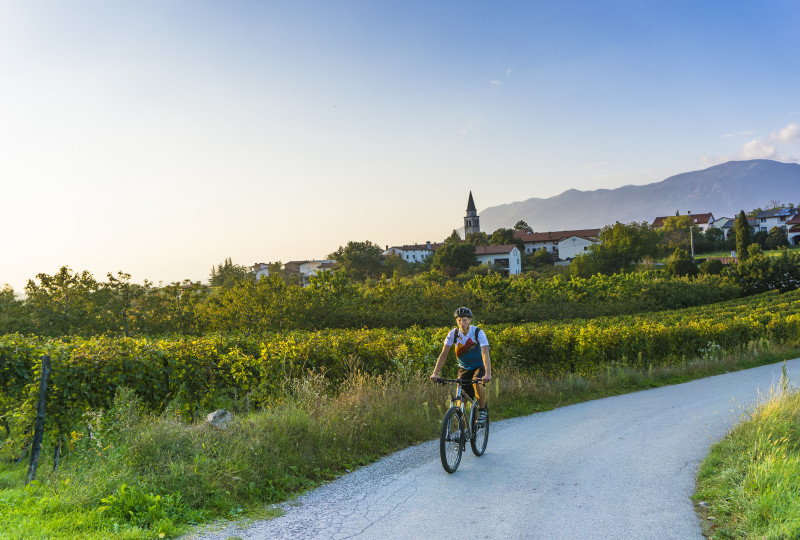 Trekking cycling Karst Slovenia