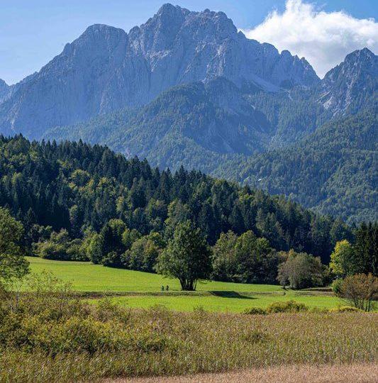 Trans Slovenia 2 Mountain view