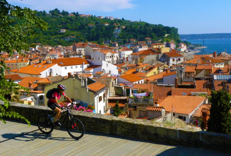 Cycling Istia in Alpe Adria