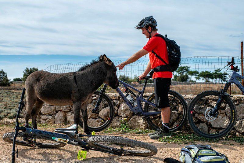 Trans Croatia short break biker with a donkey