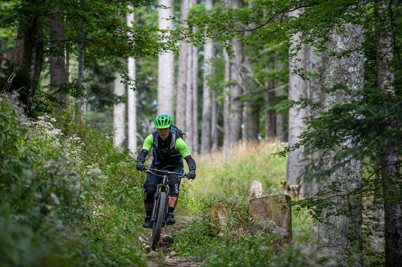 Trans Slovenia 4 mountain biker in forest 1