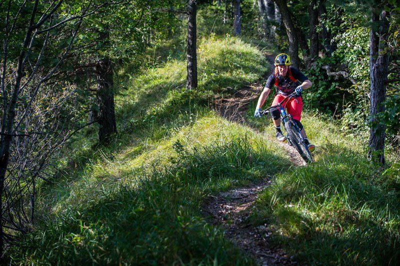 Trans Slovenia 4 MTB single trail