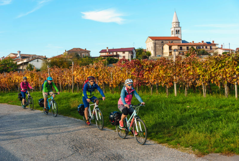bikers cycling through the vineyards