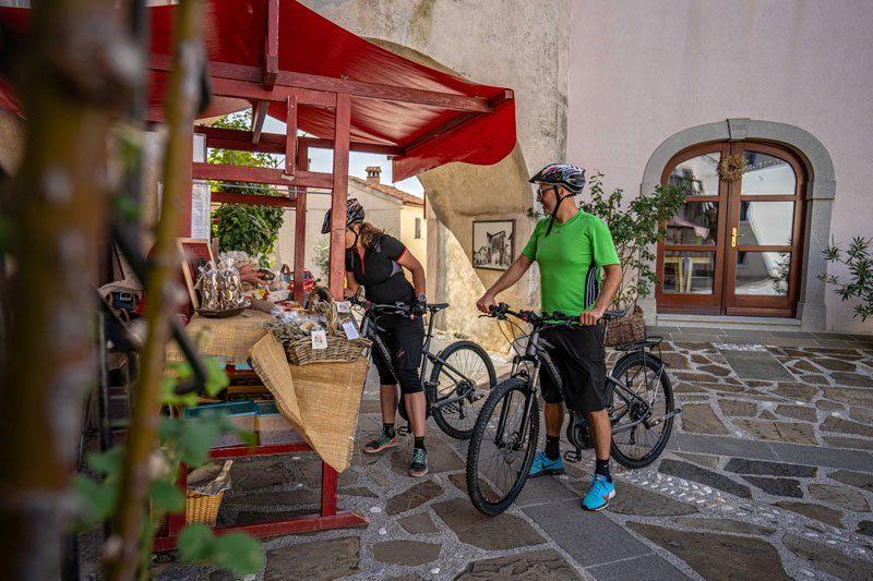 Bike Slovenia Green cyclists smartno goriska brda