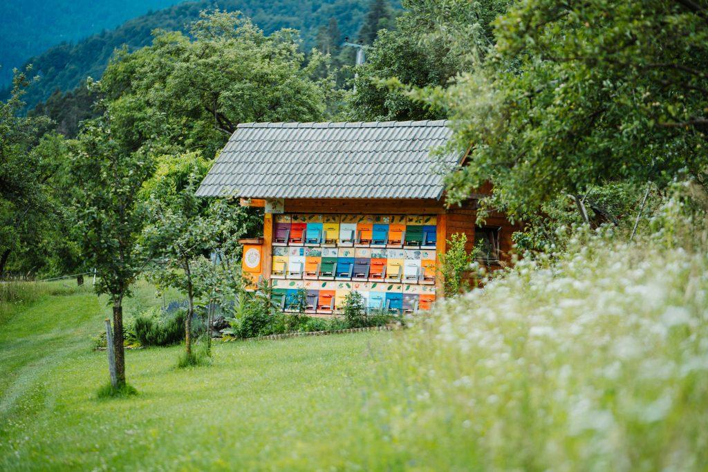 slovenia-boutique-stores-beekeeping