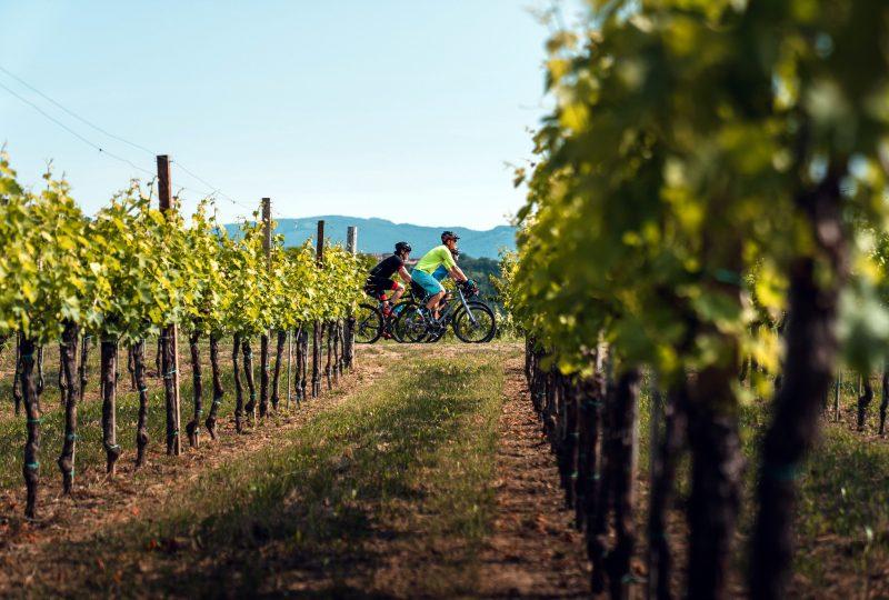 slovenia-green-gourmet-cycling-route