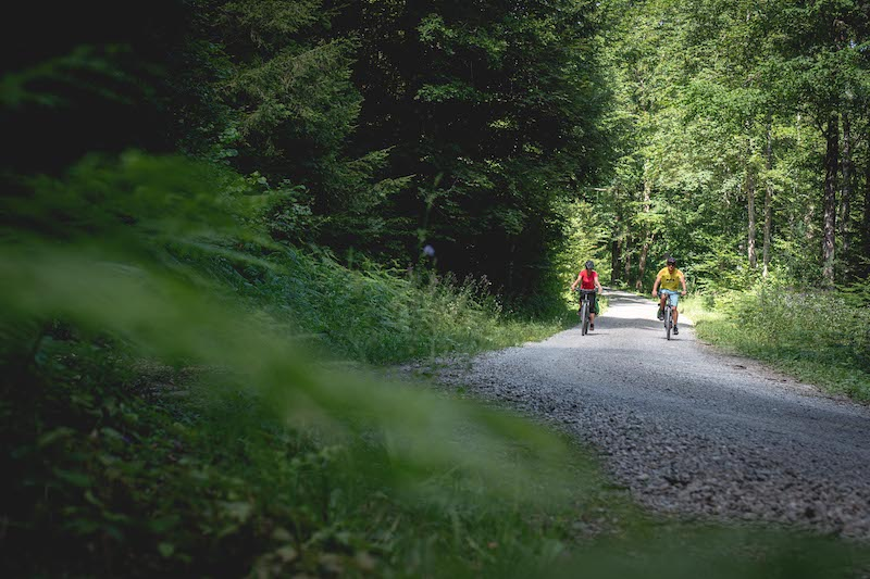 bike-slovenia-green-capitals-route-kocevsko-3