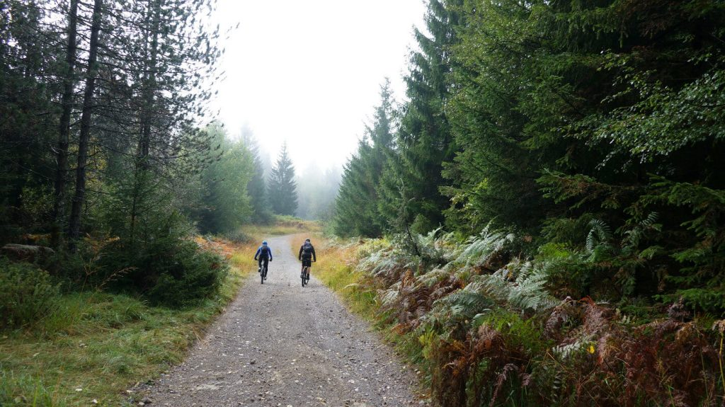 cycling-in-slovenia-in-kocevje-forests