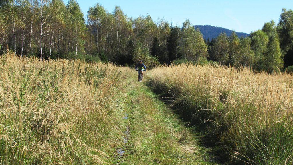 high-marshes-gorski-kotar-plateau