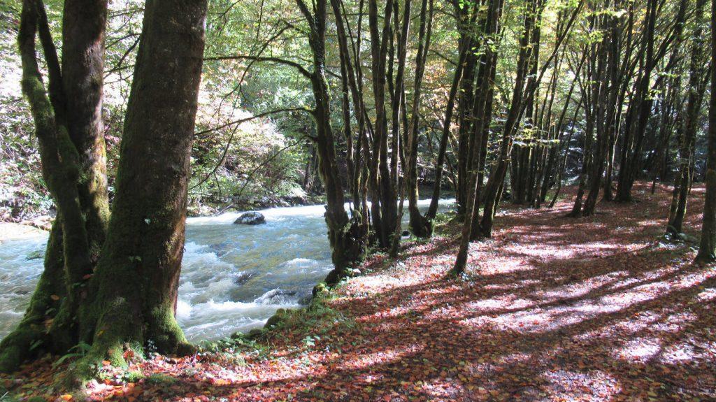 kolpa-river-tributaries-slovenia