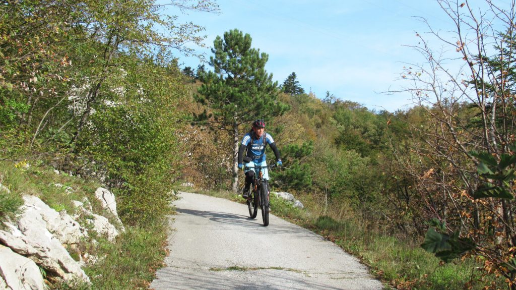 mediterranean-vegetation-and-climate-cycling-tour-slovenia