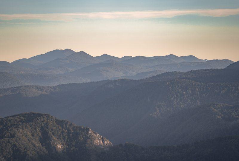 kočevje-forests-hiking-route
